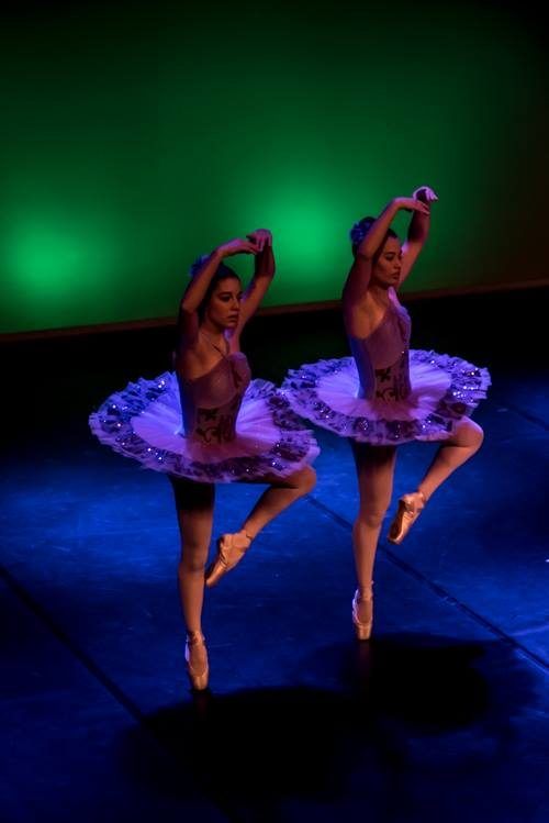 Curso Vocacional de Dança